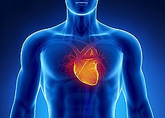 Heart-Conditions pemf8000